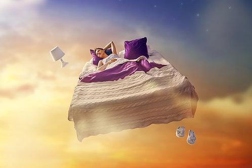 FREE eBOOK - Manifesting My Dreams Journal