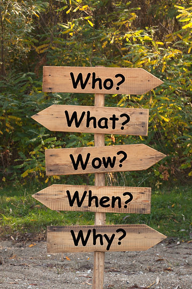 The Five Ws are questions whose answers