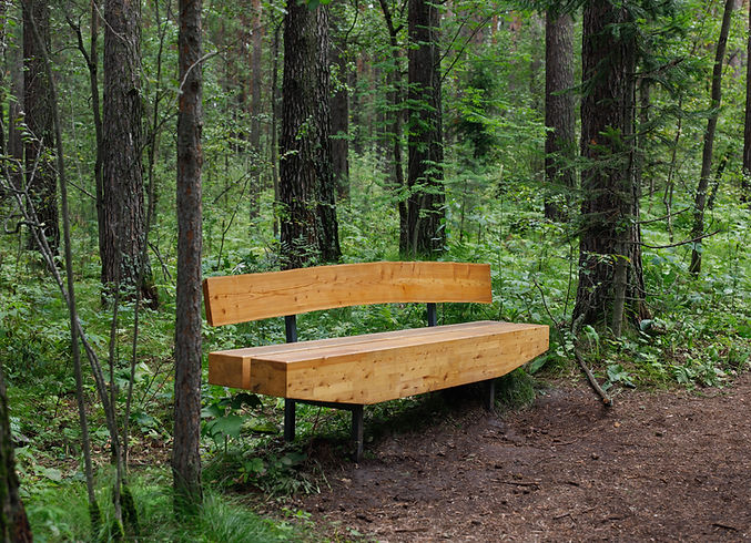 a beautiful wooden bench stands in the w