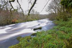 West Dart's Raging River