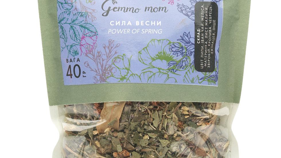 Травяной чай СИЛА ВЕСНЫ