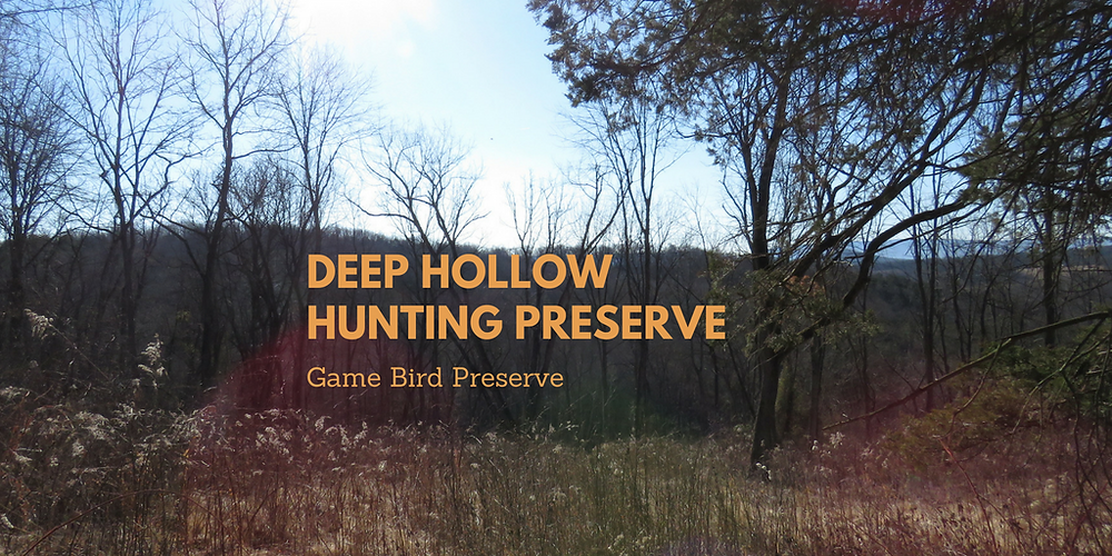 Deep Hollow Hunting preserve (2).png