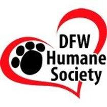 dfwhs-logo-square300-150x150.jpg