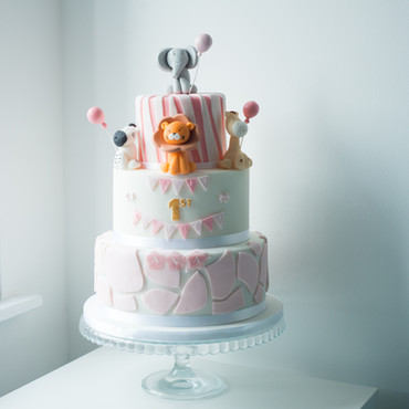 TBD_Safari cake.jpg