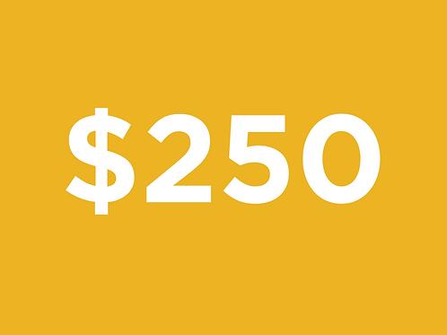 Sustaining $250