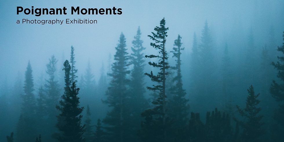 Bedford Poignant Moments Exhibition Opening