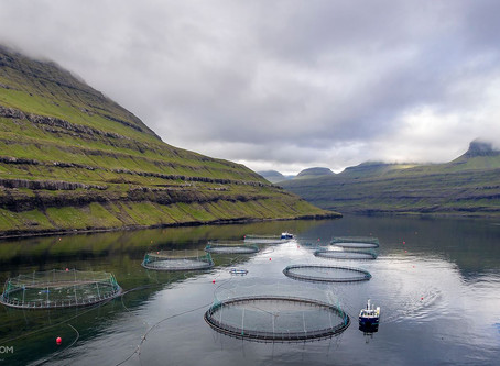 Fish Farming System