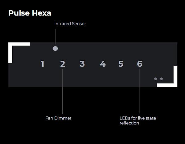 hexa-1.png
