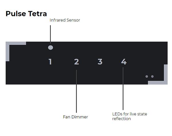 Tetra-1.png
