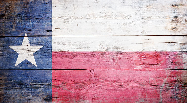 Flag of the State of Texas painted on gr