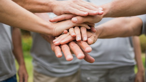 How Can You Make the Most of Your Not-For-Profit Partnerships?