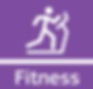 fitness mini.png