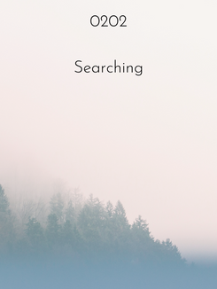 0202 | Searching