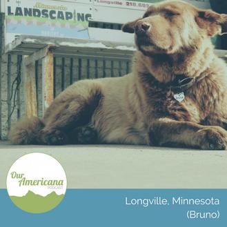 Longville, Minnesota