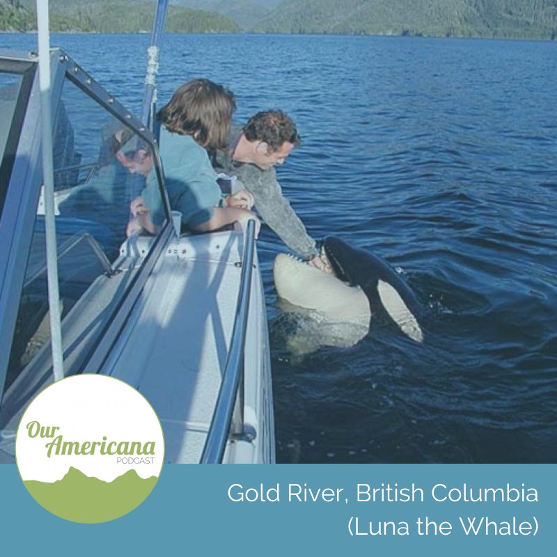 Gold River, British Columbia