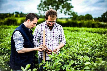 Meade Farm Growing 10