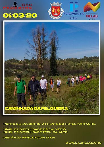 200301 Caldas da Felgueira.jpg