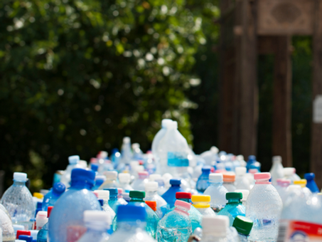 Plástico, a nova extinção em massa.