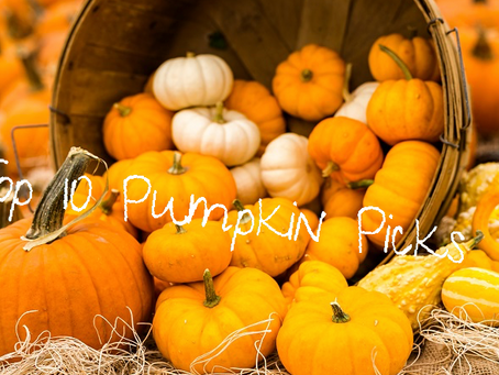 Top 10 Pumpkin Picks for Fall
