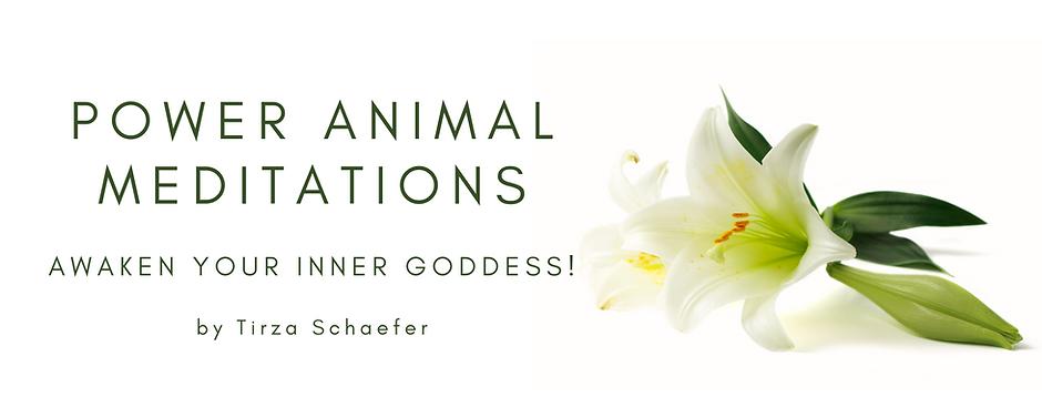 Power Animal Meditations.png