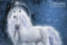 Unicorn 4x6.jpg