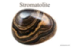 Stromatolite 4x6.jpg