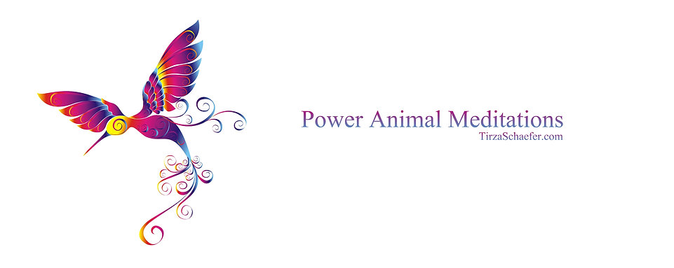 00 Power Animals Cover size 2.jpg