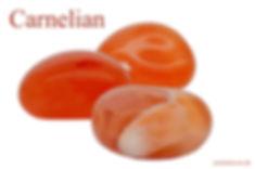 Carnelian 4x6.jpg