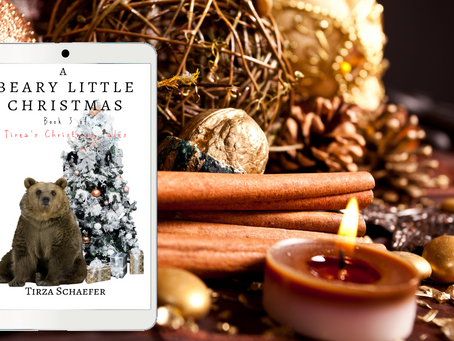 Tirza's Teasers: A Beary Little Christmas 1 (Tirza's Christmas Tales #3)