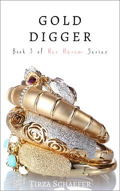 ENRH 01 - Her Harem 3 - Gold Digger B.pn