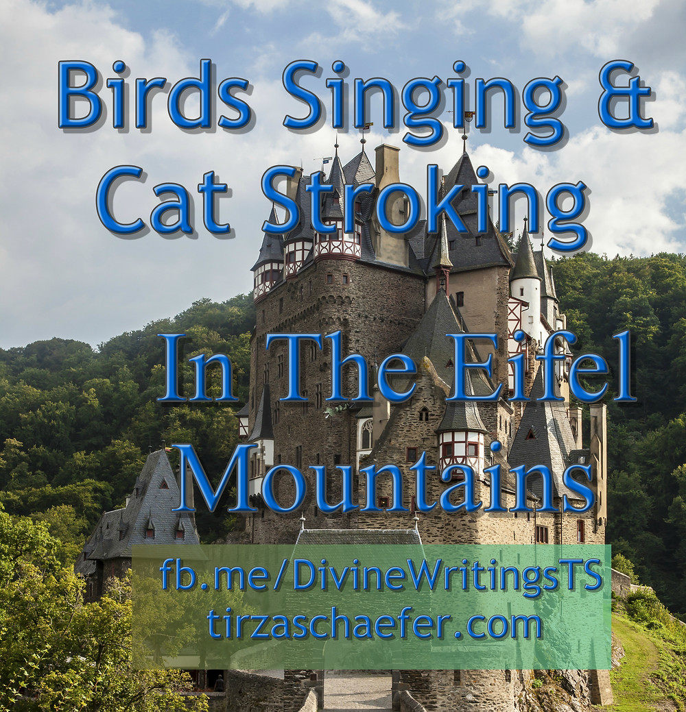 Tirza's Author Page