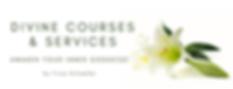 Divine Courses & Services.png