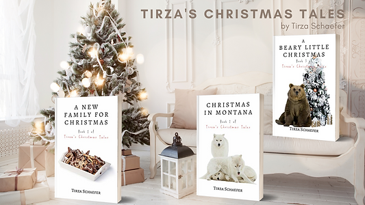 Tirza's Christmas Tales.png