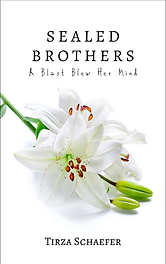 EN 06 Sealed Brothers B.png