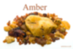 Amber 4x6.jpg