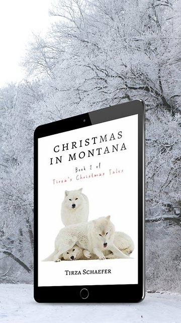 MSt TCT 2 Christmas in Montana 1.png