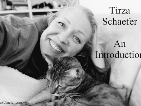 Tirza Schaefer, An Introduction