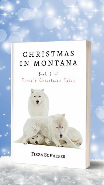 MSt TCT 2 Christmas in Montana 2.png