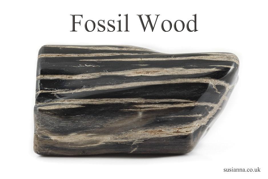Fossil Wood 4x6.jpg