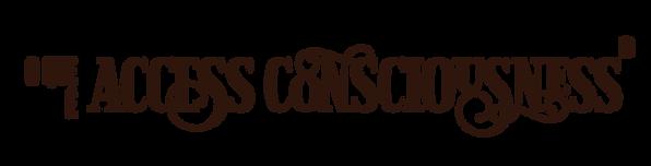 O que é Access Consciousness