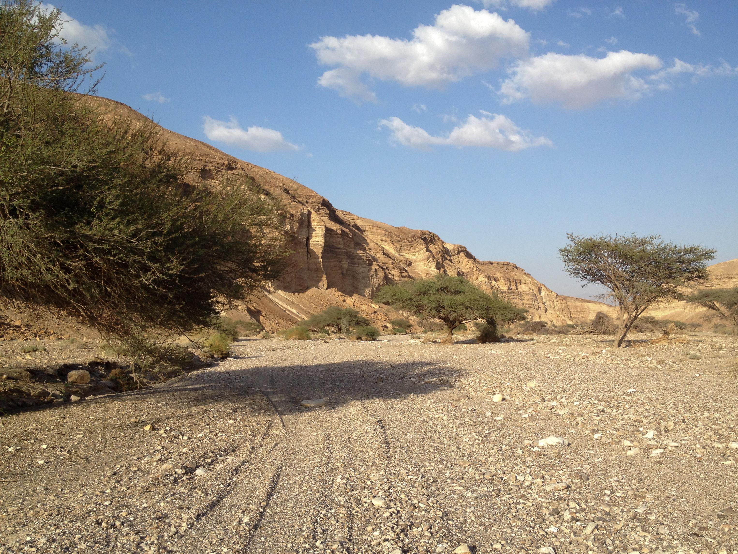 Wadi Kazra - Arava, Israel