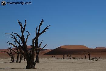 Deadvlei, Sossusvlei, expedition to Africa, ג'יפים בנמיביה