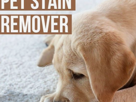 All natural pet stain remover