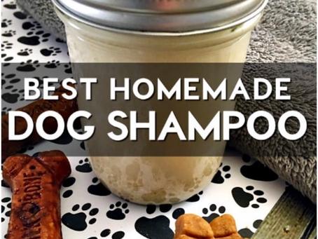 DIY-  All natural Dog shampoo