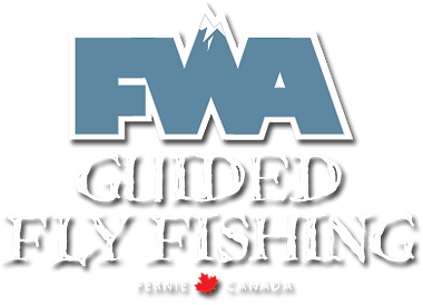 logo-fwa.png
