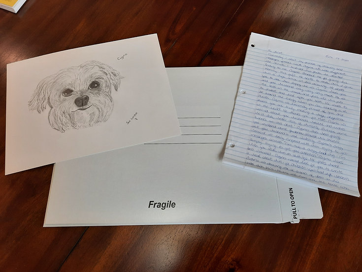 Spiritual Pet Portraits and Personal Messages From Your Pet