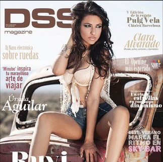 DSS Cover