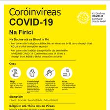 COVID Facts Irish