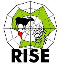 RISE Nachhaltigkeitsbericht