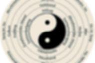 Organuhr akupunktur Chinesische Medizin